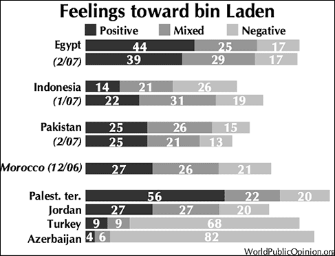 muslims-favorable-of-osama-bin-laden